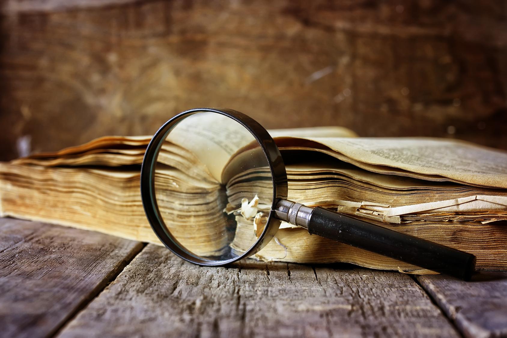 Assistance éditoriale relecture